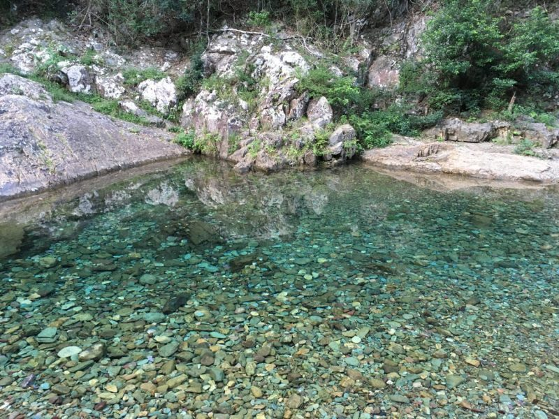 Lisa Fabry Nutrition & Yoga Therapy river with blue water and stones