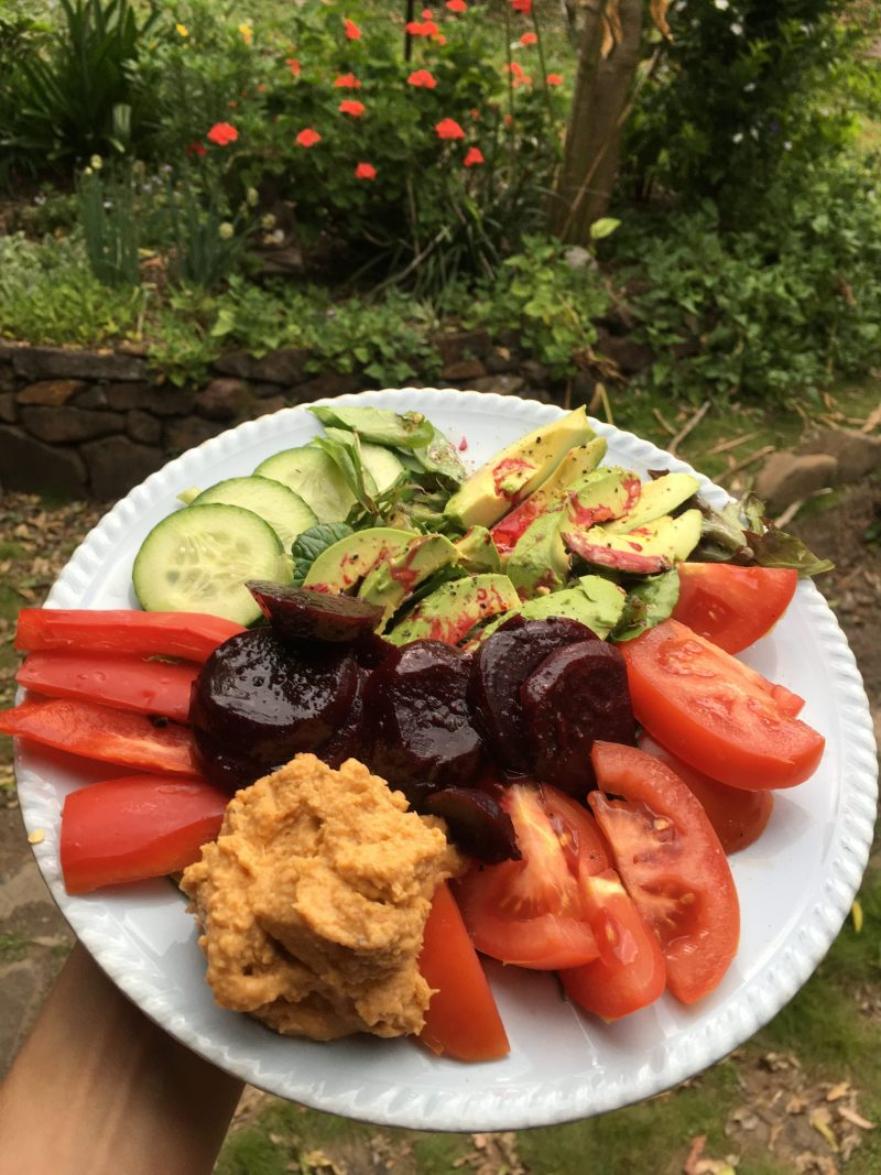 Lisa Fabry Nutrition & Yoga Therapy Divine Vegan Desserts salad